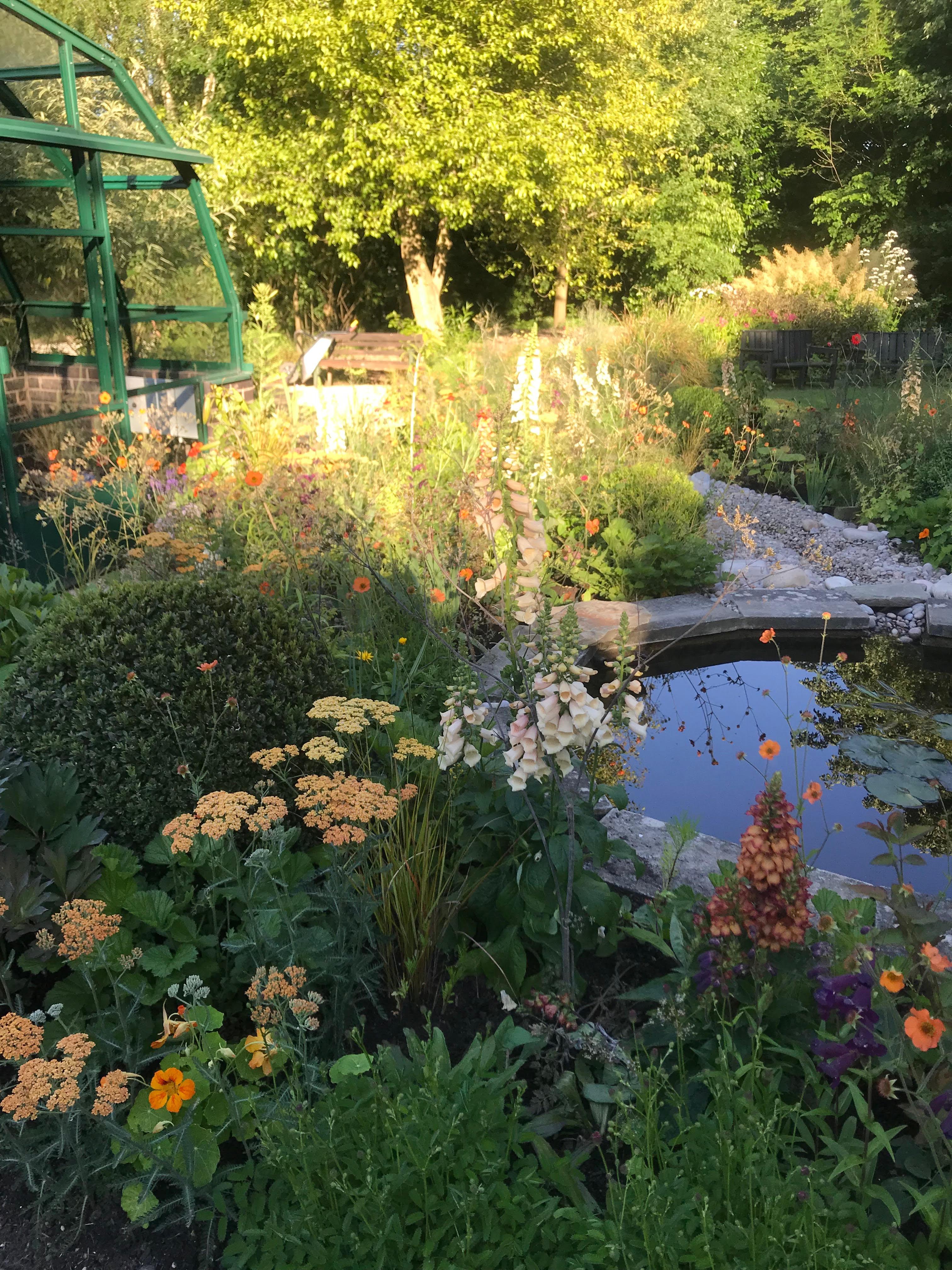 Autumn Event Sun 22 September – Martineau Gardens